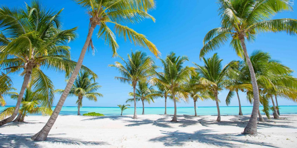 Visit The Best Beaches Of Punta Cana