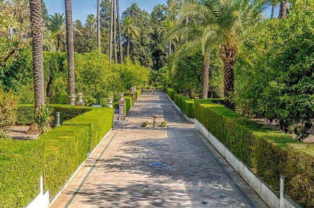 Spring in Seville