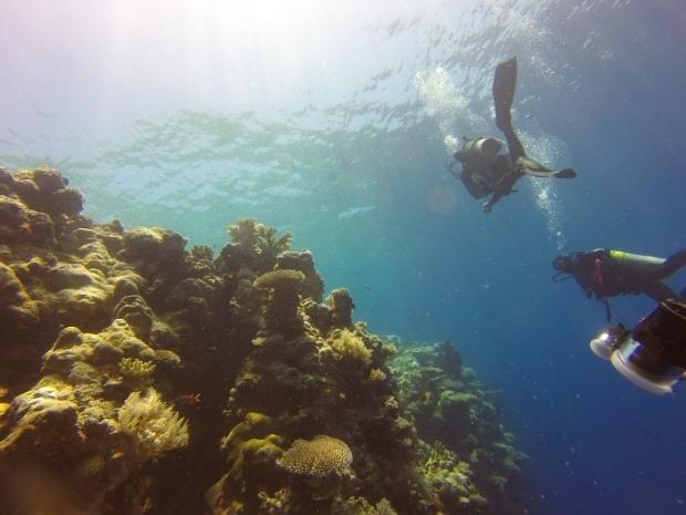 mejores sitios submarinismo caribe
