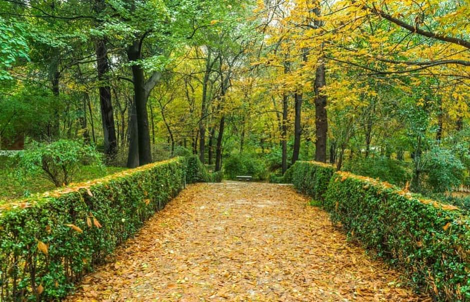lugares visitar otono madrid