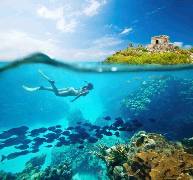 Buceando por el Gran Arrecife Maya.